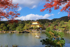 Kinkakuji Temple (The Golden Pavilion) with autumn maple Stock Image