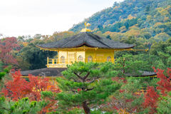 Kinkakuji Temple or the Golden Pavilion in Kyoto Royalty Free Stock Image