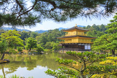 Kinkakuji Temple Golden Temple in Kyoto, Japan Royalty Free Stock Photo