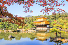 Kinkakuji Temple. In Kyoto, Japan royalty free stock images