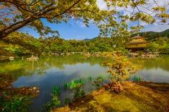 Kinkakuji Temple Kyoto Royalty Free Stock Photo