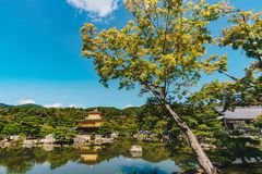 Kinkakujitempel het Gouden Paviljoen in Kyoto, Japan Stock Foto's