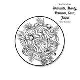 Kinkali manti, klimpar Geza Jiaozi Pelmeni Rysk pelmeni på en platta Mat Pelmeni Rysk pelmeni på en platta Mat Dill, Arkivbild