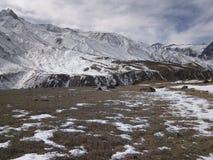 Kinnaur Himachal de Chhitkul Fotografia de Stock