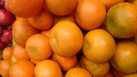 Kinnow. Citrus nobilis x Citrus deliciosa, sometimes listed as C. reticulata, a possible hybrid between King Tangor and Willowleaf mandarine, commonly royalty free stock image