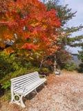 Kinosaki é cidade pequena para onsen (bastão morno público do estilo japonês Imagens de Stock Royalty Free