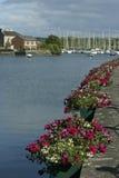 Kinsale, Ирландия Стоковое Изображение RF