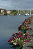 Kinsale,爱尔兰 免版税库存图片