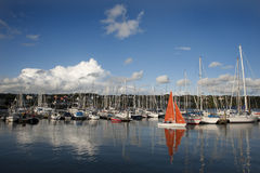 Kinsale sailing 002 royalty free stock photography