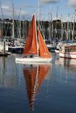 Kinsale segling Arkivbilder