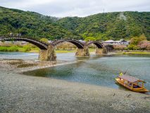 Kintaikyo historical wooden bridge in spring season with cherry blossom stock image