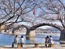 Kintaikyo, il ponte di legno storico dell'arco nel Giappone Fotografia Stock Libera da Diritti