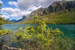Kintla湖冰川国家公园 库存照片