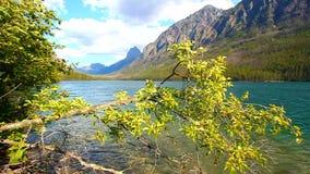 Kintla湖冰川国家公园 股票视频