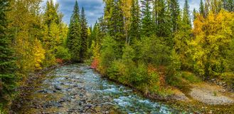 Kintla Creek Stock Photography