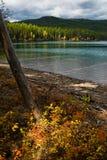Kintla Lake. Dappled light falls on autumn foliage on the shore of Kintla Lake near the northern border of Montana's Glacier National Park Royalty Free Stock Photo