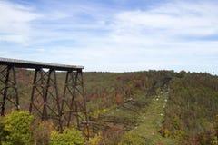 Kinzau Bridge Skywalk and State Park Royalty Free Stock Images