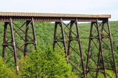 Kinzua mosta stanu park Obraz Stock