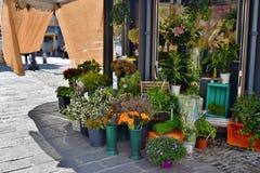Kiosk van bloemen Stock Foto