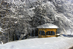 Kioski under Snow trees Royalty Free Stock Photos