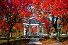 Kiosque dans l'automne image libre de droits