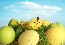 Kip en eieren Stock Afbeelding