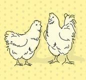 Kip en haan Royalty-vrije Stock Fotografie