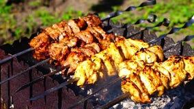 Kip en kalfsvleeskebabsbarbecues bij de grill stock footage