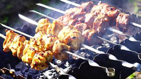 Kip en kalfsvleeskebabsbarbecues bij de grill stock video