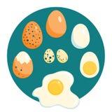 Kip en kwartels gebraden eieren, ruw, gekookt, Stock Foto