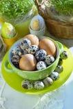 Kip en kwartelseieren in kleurrijke porseleinschotel en Verse tuinkers Pasen Stock Afbeeldingen