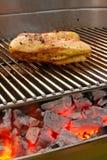 Kip op de barbecue met rollen stock fotografie