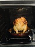 Kip in oven Stock Foto's