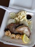 Kipiel & murawa Zawieramy: Ahi, stek, garnela, ryż i mac sałatka, Obraz Royalty Free