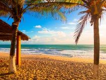 Kipiel plażowy Brazylia fotografia stock