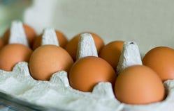 Kippen gele eieren in een kartondoos stock afbeelding