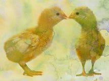 kippen met waterverftextuur royalty-vrije illustratie
