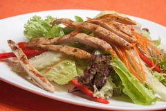 Kippen plantaardige salade royalty-vrije stock fotografie