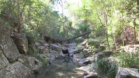Kippen Sie oben von der Reflexion im Wasser West-Ithaca-Nebenflusses, Brisbane Australien stock video