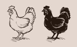 Kippen vectorembleem landbouwbedrijf, gevogelte, kip, kippictogram vector illustratie