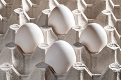 Kippen witte eieren in een cassette Stock Foto's