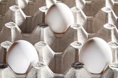 Kippen witte eieren in een cassette Royalty-vrije Stock Foto's