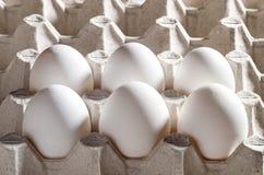 Kippen witte eieren in een cassette Stock Fotografie