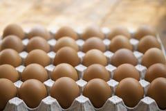 Kippeneieren in de doos van het eikarton, close-up voor ruw concept royalty-vrije stock foto's
