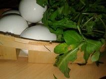 Kippeneieren in een Afval groen Stock Foto