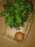 Kippeneieren in een Afval groen Stock Fotografie