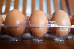 Kippeneieren in een plastic pak royalty-vrije stock foto
