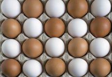 Kippeneieren, op een gewankelde manier in de container worden gelegd die Stock Fotografie