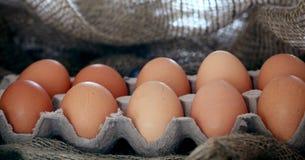 Kippeneieren op het landbouwbedrijf Stock Afbeeldingen
