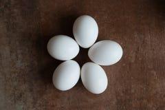 Kippeneieren op Tegelachtergrond stock afbeelding